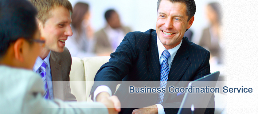 Business Coordination Service